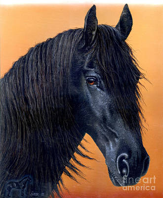 Friesian Painting - Wytse by Jurek Zamoyski