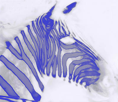Xray Digital Art - X-ray Zebra by Bill Cannon