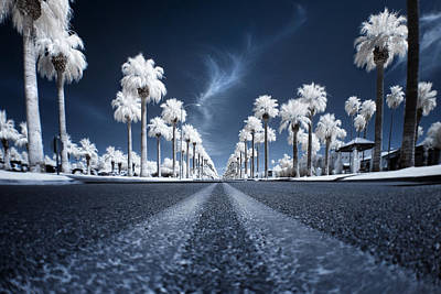 Asphalt Photograph - X by Sean Foster