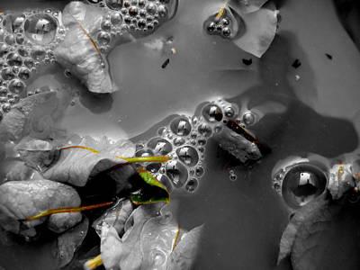 Digital Art - X Water by Beto Machado
