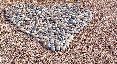 Photograph - Xeriscape Heart by Claudia Goodell