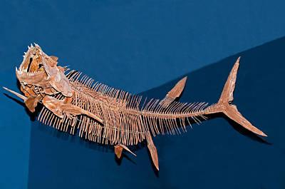 Xiphactinus Audax Fish Fossil Art Print