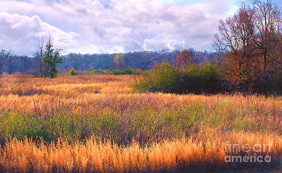 Photograph - Louisiana Meadow by Judi Bagwell