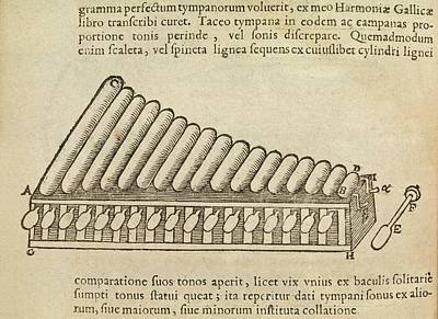 Xylophone Art Print by Middle Temple Library