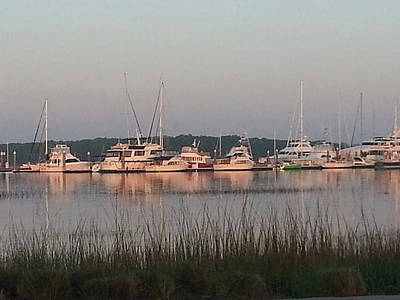 Photograph - Yacht And Harbor View by Joetta Beauford