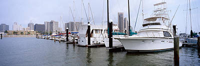 Corpus Christi Photograph - Yachts At A Harbor With Buildings by Panoramic Images