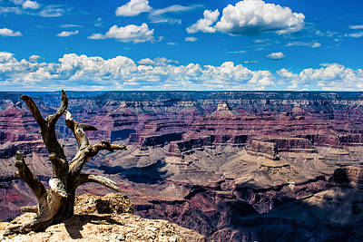 Photograph - Yaki Point Color by John McArthur
