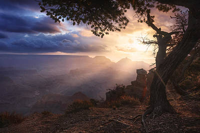 Yaki Photograph - Yaki Point by Michael Breitung