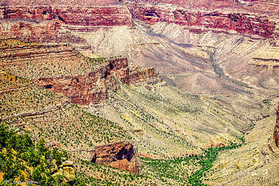 Yaki Point View Of The Grand Canyon Art Print by Bob and Nadine Johnston