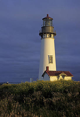 Photograph - Yaquina Head Lighthouse by Doug Davidson