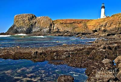 Photograph - Yaquina Head On The Rocks by Adam Jewell