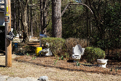 Photograph - Yard Art Hwy 21 South by Charles Hite