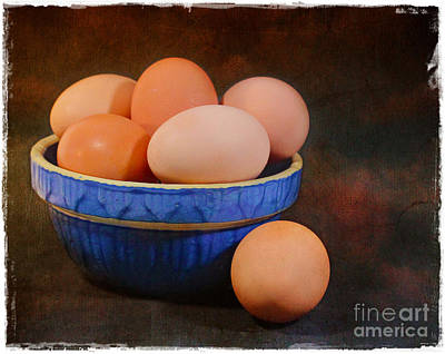 Photograph - Yard Eggs by Judi Bagwell