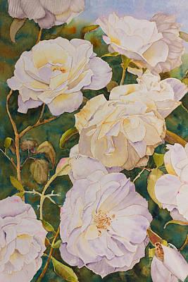 Yarrambat Roses Original