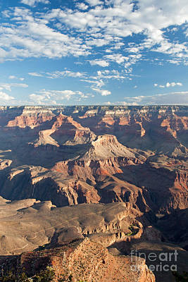 Photograph - Yavapai Point Grand Canyon National Park by Fred Stearns