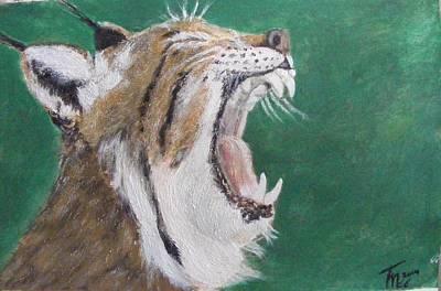 Lynx Painting - Yawn by Thomas McCaskie