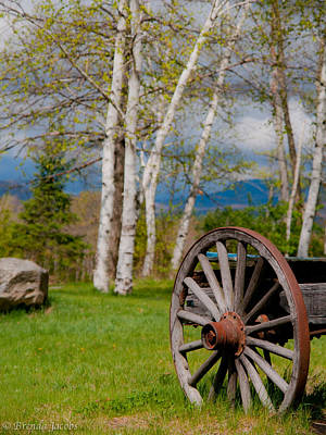 Photograph - Ye Olde Wagon Wheel by Brenda Jacobs