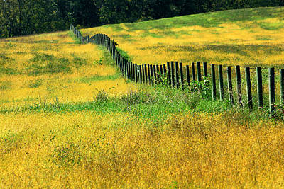 Photograph - Yellow Afternoon by Emanuel Tanjala