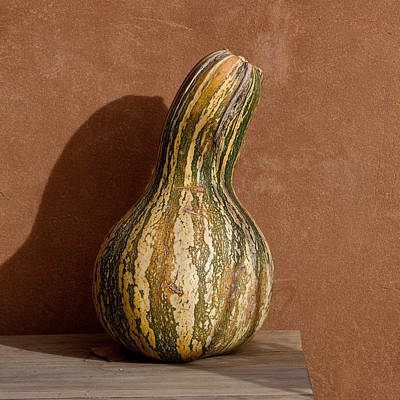 Photograph - Yellow And Green Squash by Art Block Collections