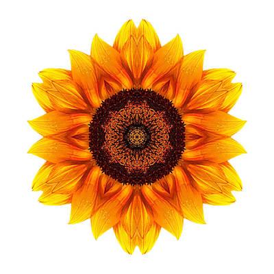 Photograph - Yellow And Orange Sunflower Vi Flower Mandala White by David J Bookbinder