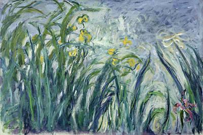 Purple Irises Painting - Yellow And Purple Irises, 1924-25 by Claude Monet