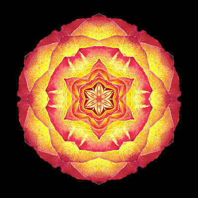 Photograph - Yellow And Red Rose IIi Flower Mandala by David J Bookbinder