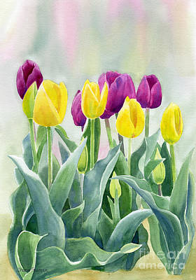 Yellow And Red Violet Tulips With Background Original by Sharon Freeman