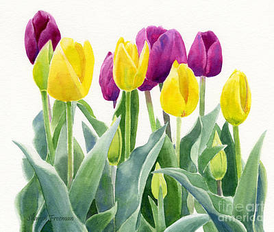 Yellow And Violet Tulips Horizontal Design Art Print