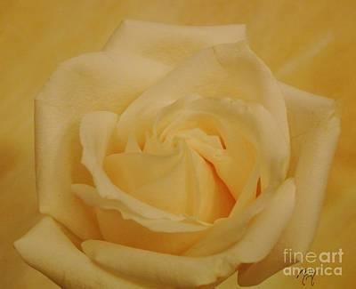 Wrap Digital Art - Yellow Beauty Rose by Marsha Heiken