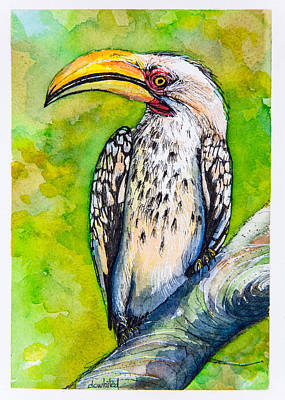 Yellow-billed Hornbill Original by Dave Whited