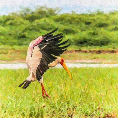 Stork Digital Art - Yellow-billed Stork by Liz Leyden