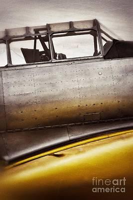 Photograph - Yellow Bird by AK Photography