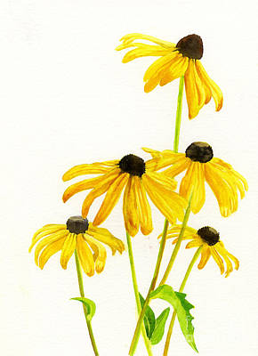 Yellow Black Eyed Susans Art Print by Sharon Freeman