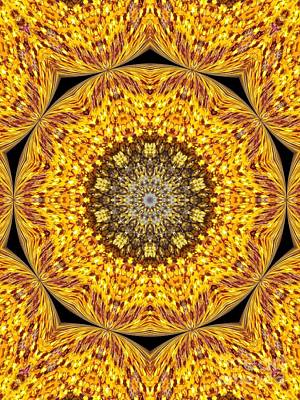 Yellow Burst  Art Print by Annette Allman