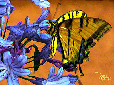 Abstract Digital Painting - Yellow Butterfly On Agapanthus by Douglas MooreZart