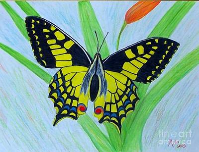 Drawing - Yellow Butterfly by Peggy Miller