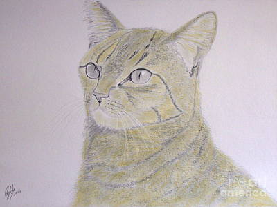 Yellow Cat Original by Cybele Chaves