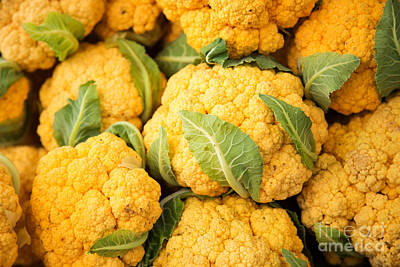 Cauliflower Photograph - Yellow Cauliflower by Rebecca Cozart