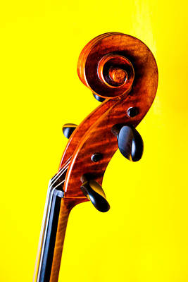 Musician Photograph - Yellow Cello Scroll by Mela Luna
