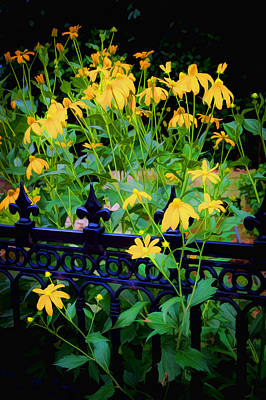 Yellow Coneflowers Echinacea Wrought Iron Gate Art Print by Rich Franco