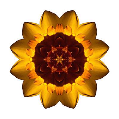 Photograph - Yellow Daffodil I Flower Mandala White by David J Bookbinder