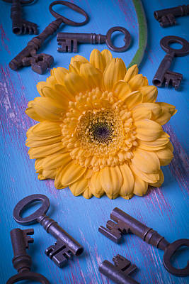Chrysanthemums Photograph - Yellow Daisy And Keys by Garry Gay