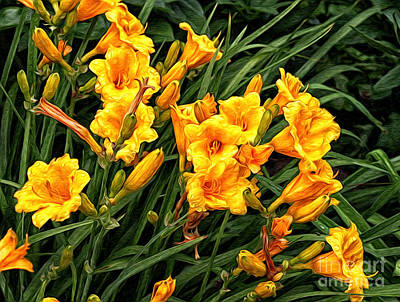 Photograph - Yellow Daylilies by Lena Auxier