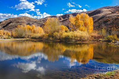 Mount Nebo Photograph - Yellow Fall Reflections by Robert Bales