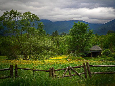 Photograph - Yellow Fields In Franconia New Hampshire by Nancy Griswold