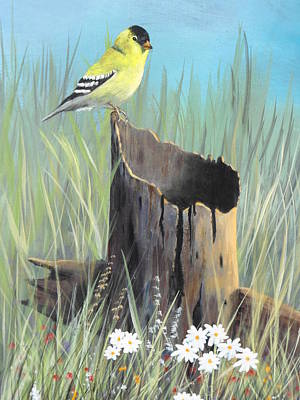 Daiseys Painting - Yellow Finch by Frank Cochran