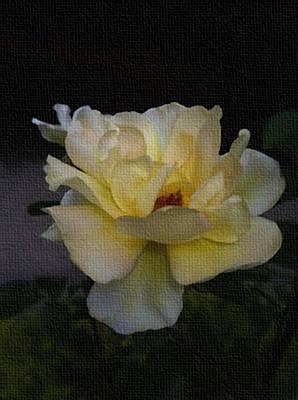 Yellow Floral Close-up Art Print