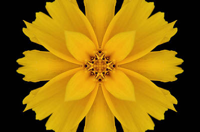 Yellow Flower Kaleidoscope Abstract Print by Don Johnson