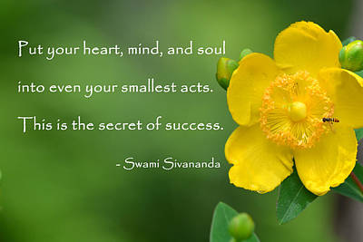 Photograph - Yellow Flower With Success Quote by Beth Sawickie