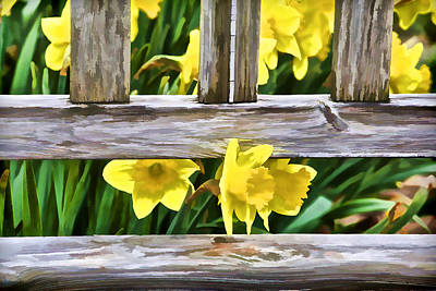 Yellow Flowers By The Bench Print by David Letts
